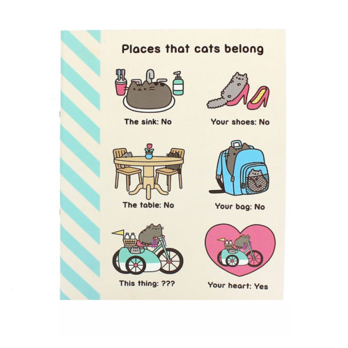 pusheen stationery Ringbinder front