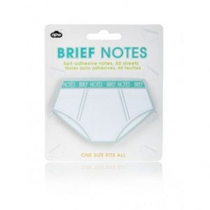 NPW Brief Notes - Sticky Notes